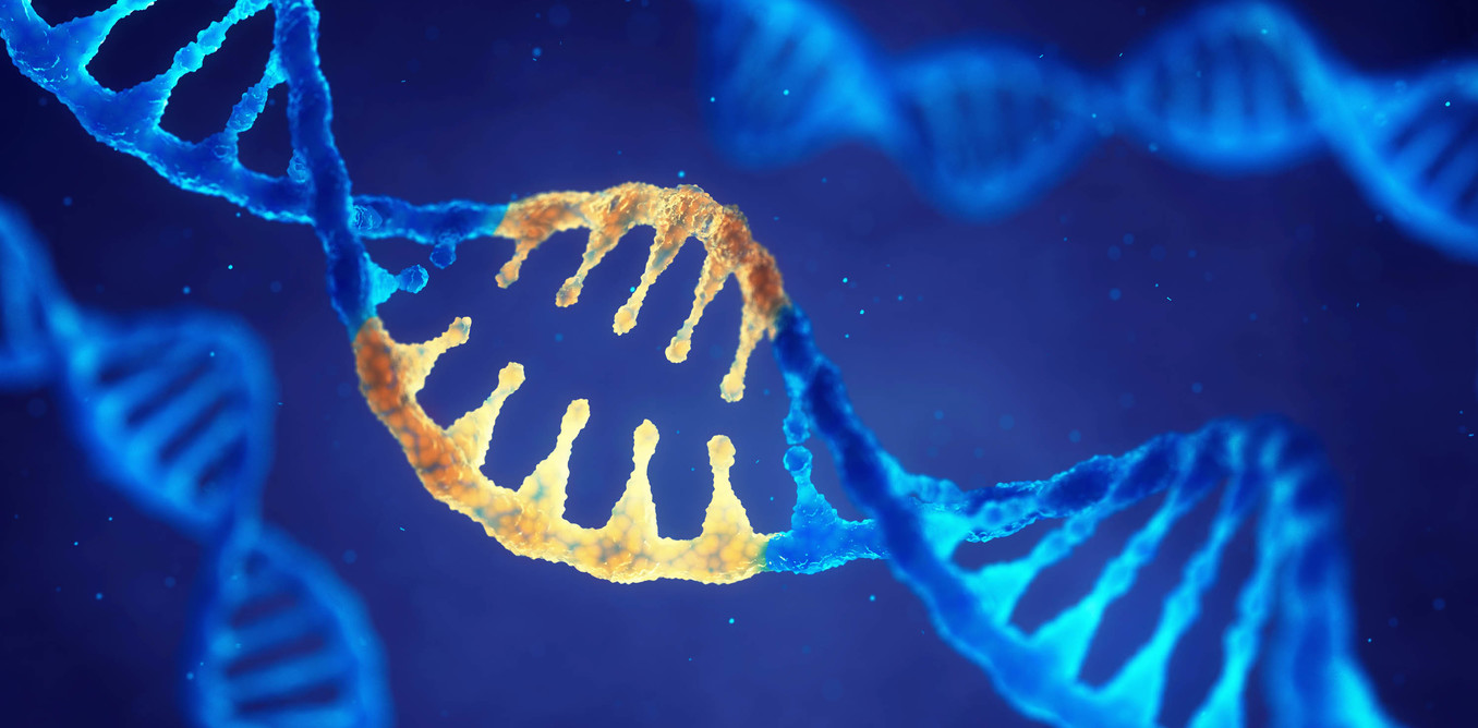genetic engineering should not be encouraged Correct a genetic defect positive genetic engineering make a life-form better types of genetic therapy genetic engineering should not be encouraged write up.