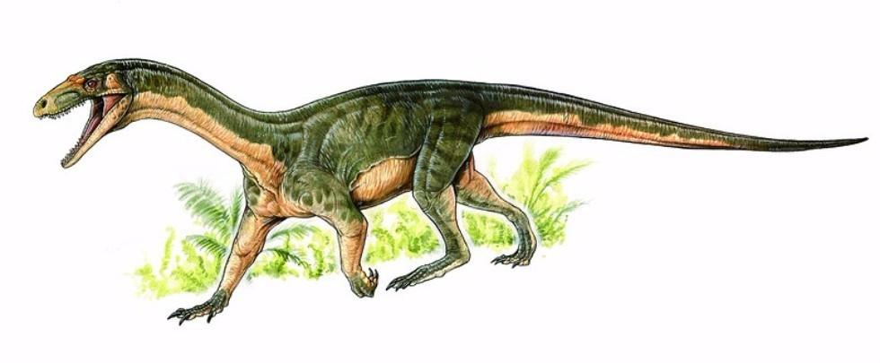 Paleobiologists Make Intriguing New Discoveries About Dinosaur Ancestors