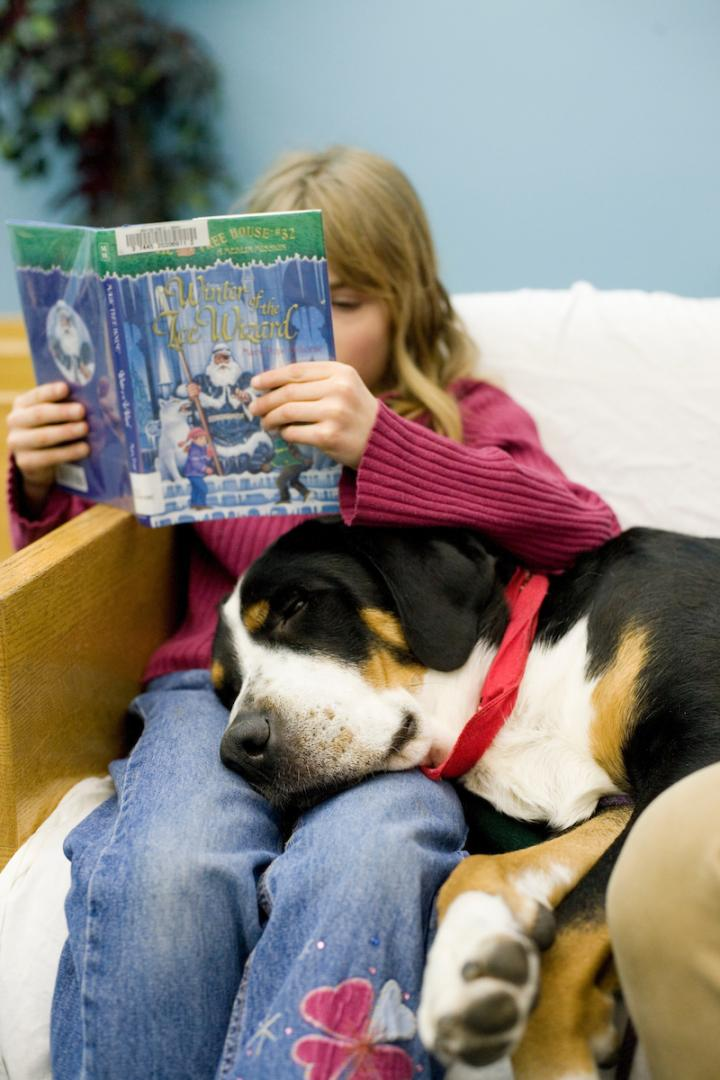 Reading The Nine Of Pentacles: Reading To Therapy Dogs Improves Literacy Attitudes In