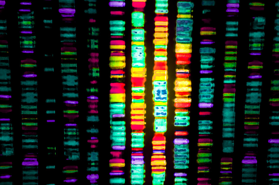 how to change the human genome