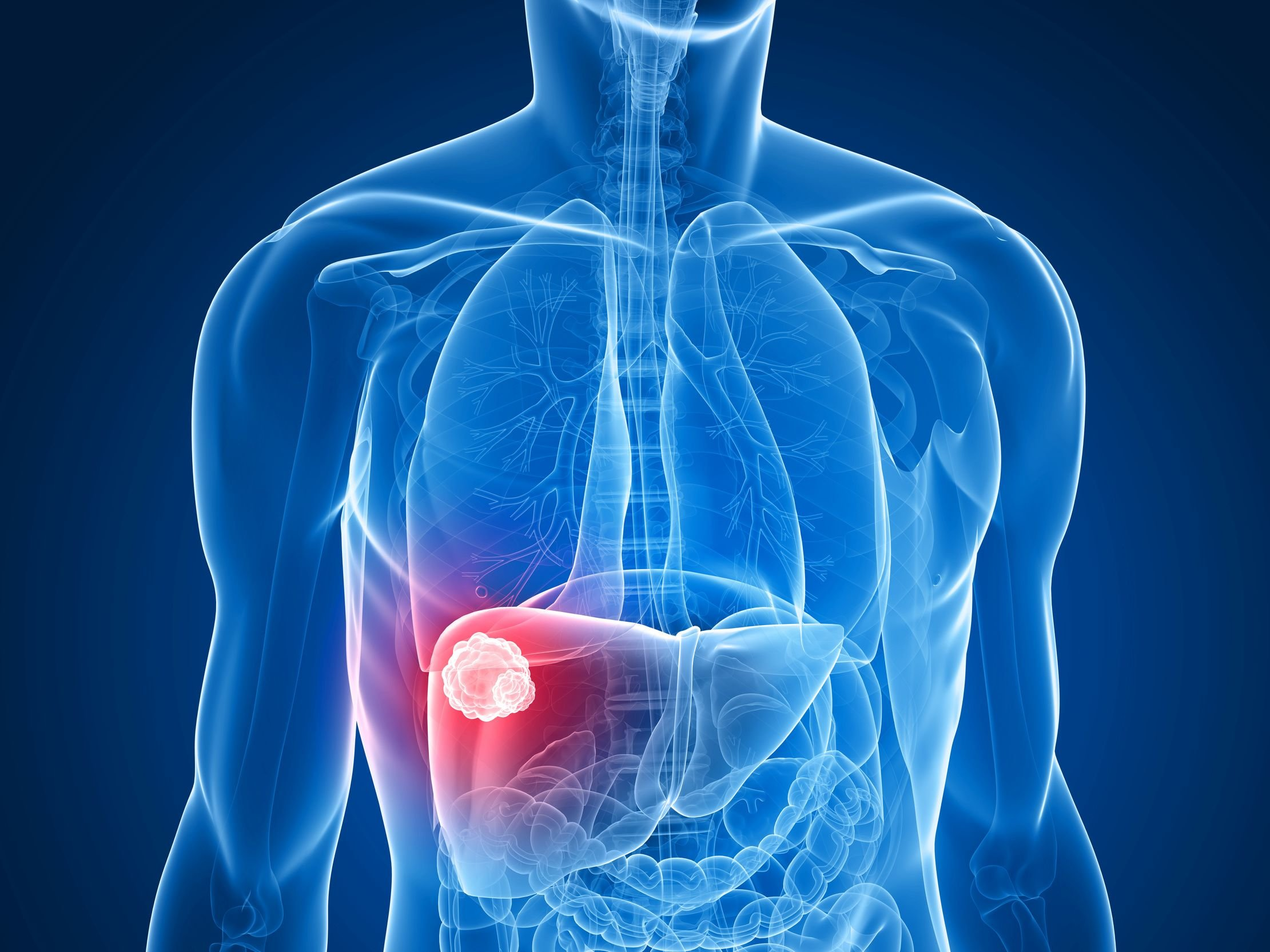 Serotonin Promote Liver Regeneration Following Liver Cancer