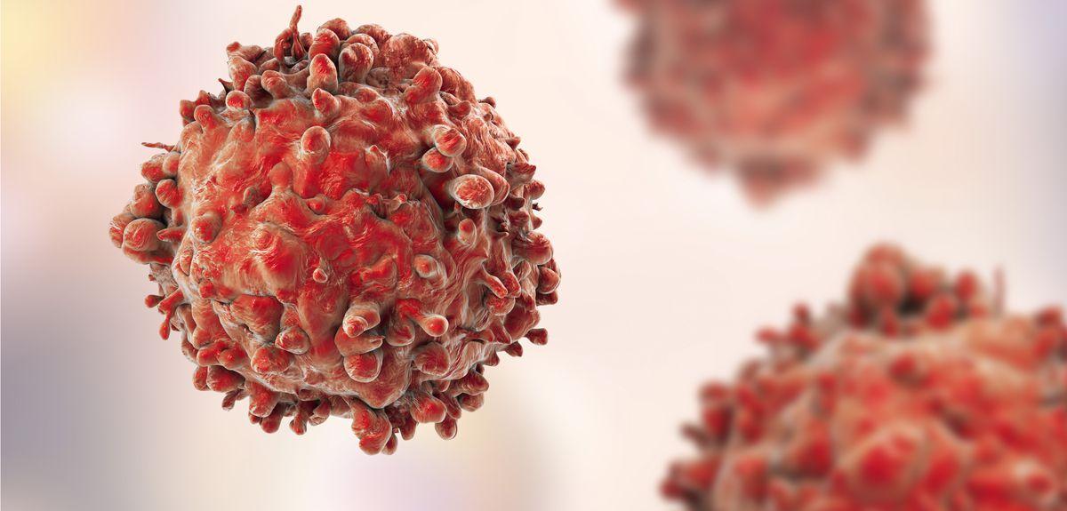 Image result for cancer cells