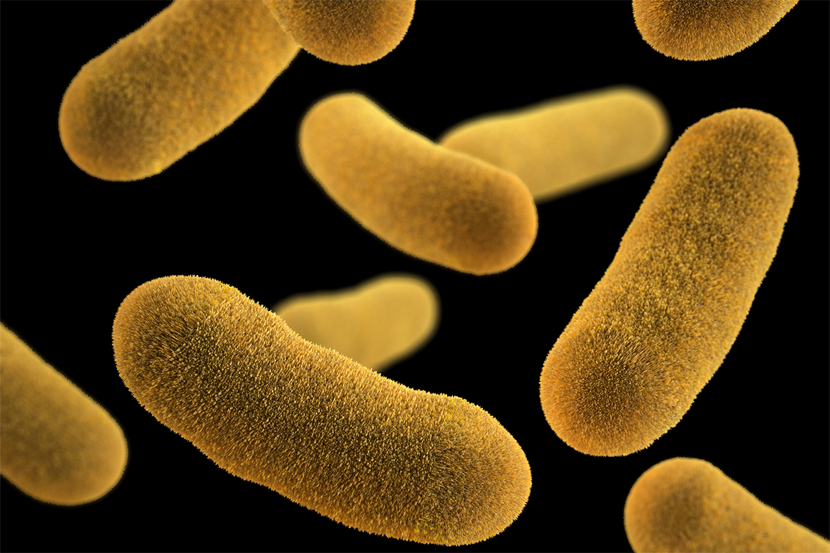 slowing dangerous bacteria may be more effective than killing them