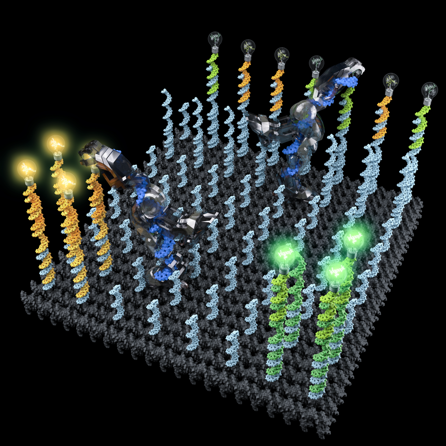 DNA Nanorobots Pick Up And Sort Molecules