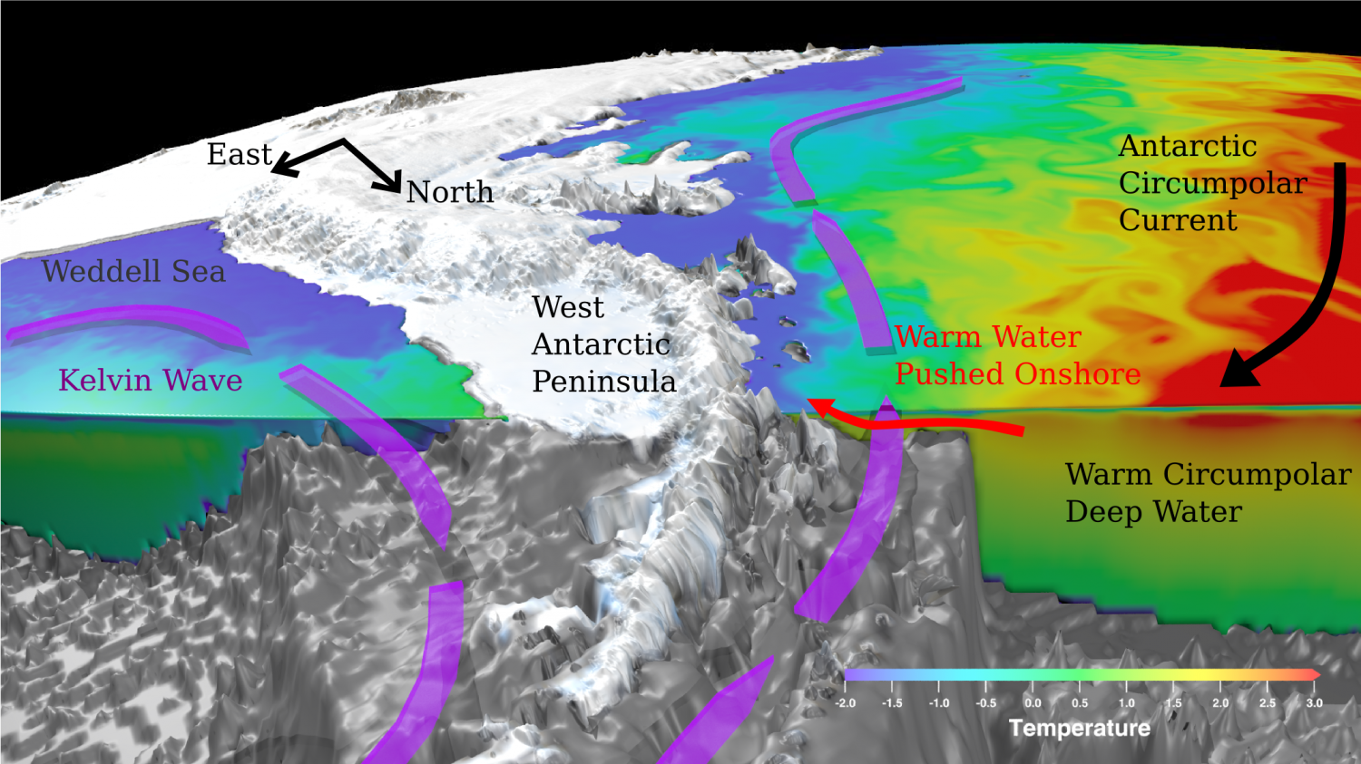 West Antarctic Ice Sheet Stable