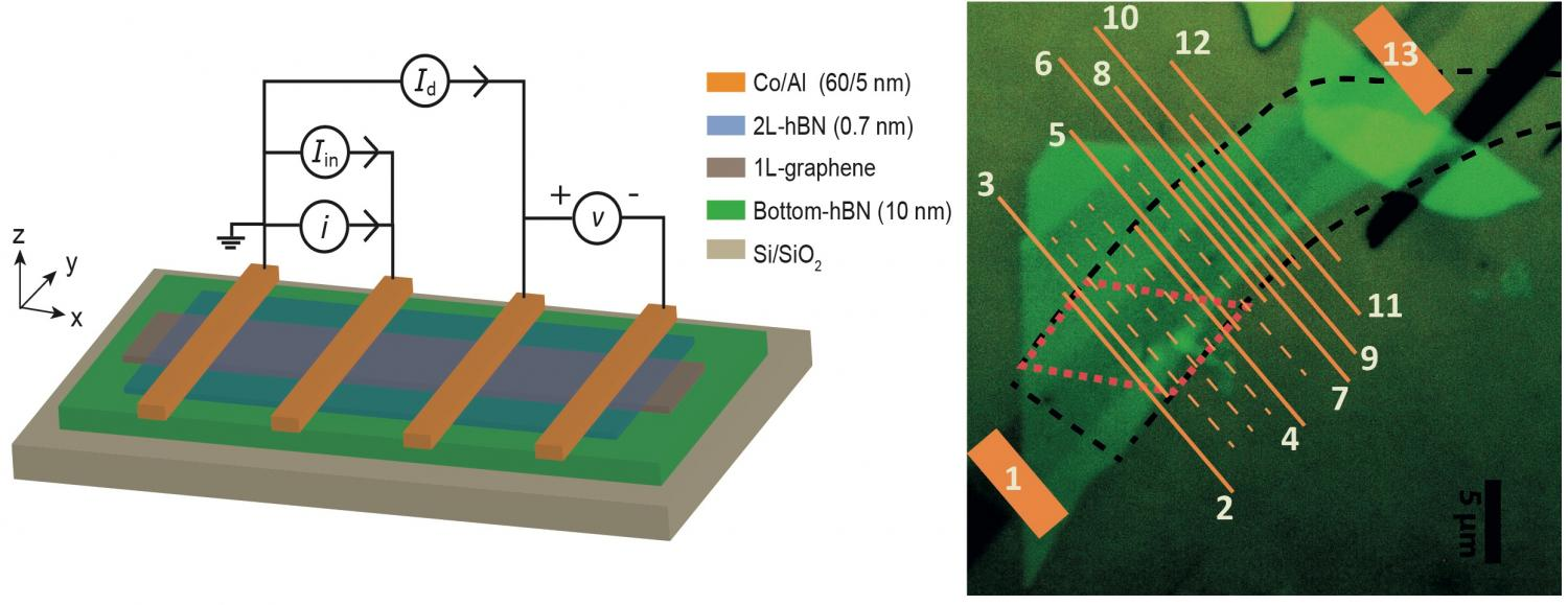 A graphene and boron nitride heterostructure creates large spin signals