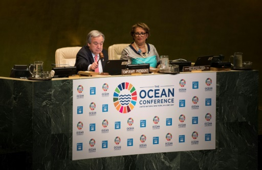 Ocean Conference Addresses MPAs, Ocean Acidification