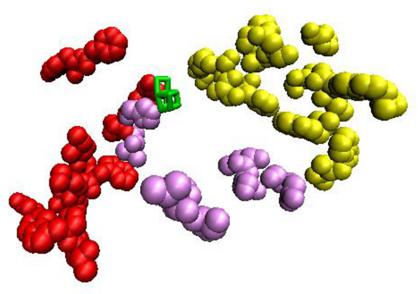 Mapping 'damage trails' lets researchers follow the water in Photosystem II