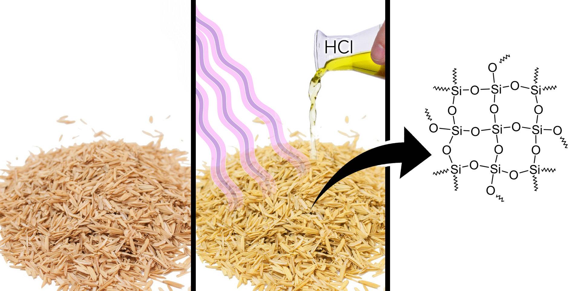 Chemist obtains a nanocatalyst base from rice husk