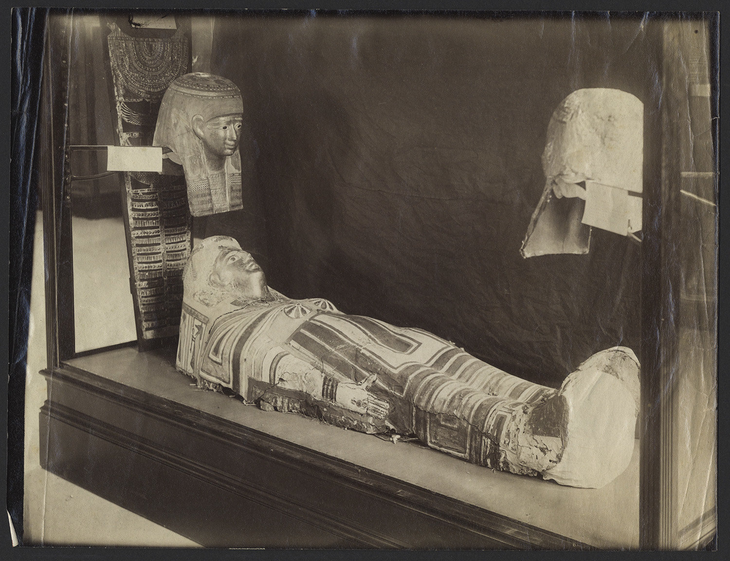 This historical photo shows the ancient Egyptian mummy case on display at the Stanford museum before the 1906 earthquake broke it into pieces. Credit: Department of Special Collections and University Archives, Stanford University Libraries