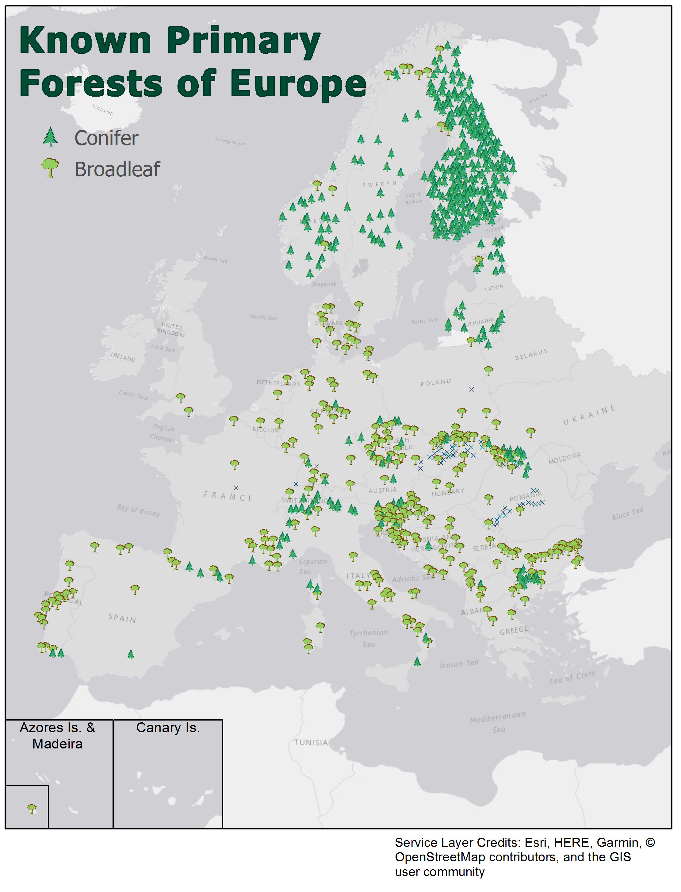 New Map Shows Many Old Growth Forests Remain In Europe