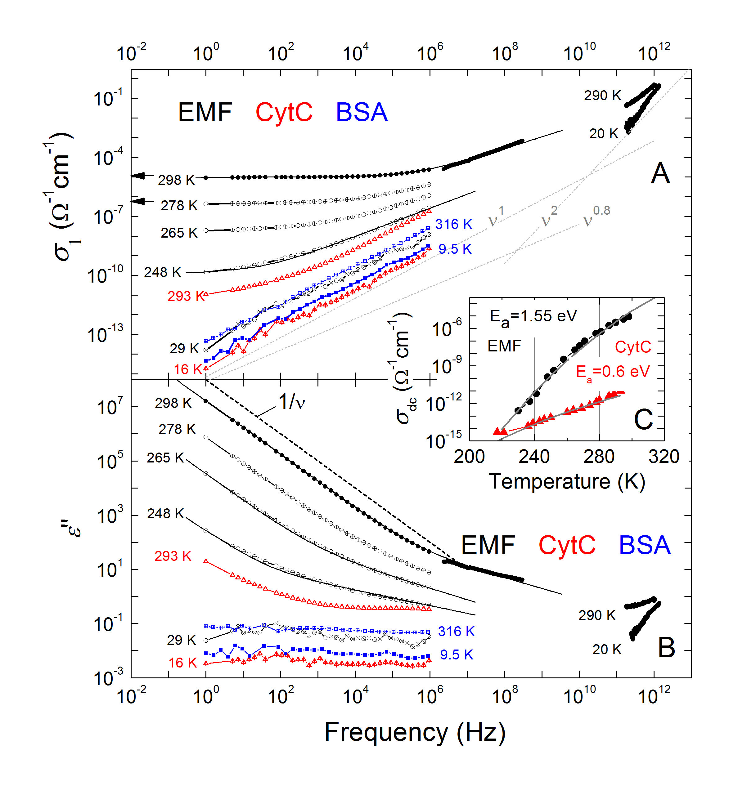 Solid State Physics Offers Insights Into Dielectric Properties Of Water Is A Conductor Electricity When In Biomaterials
