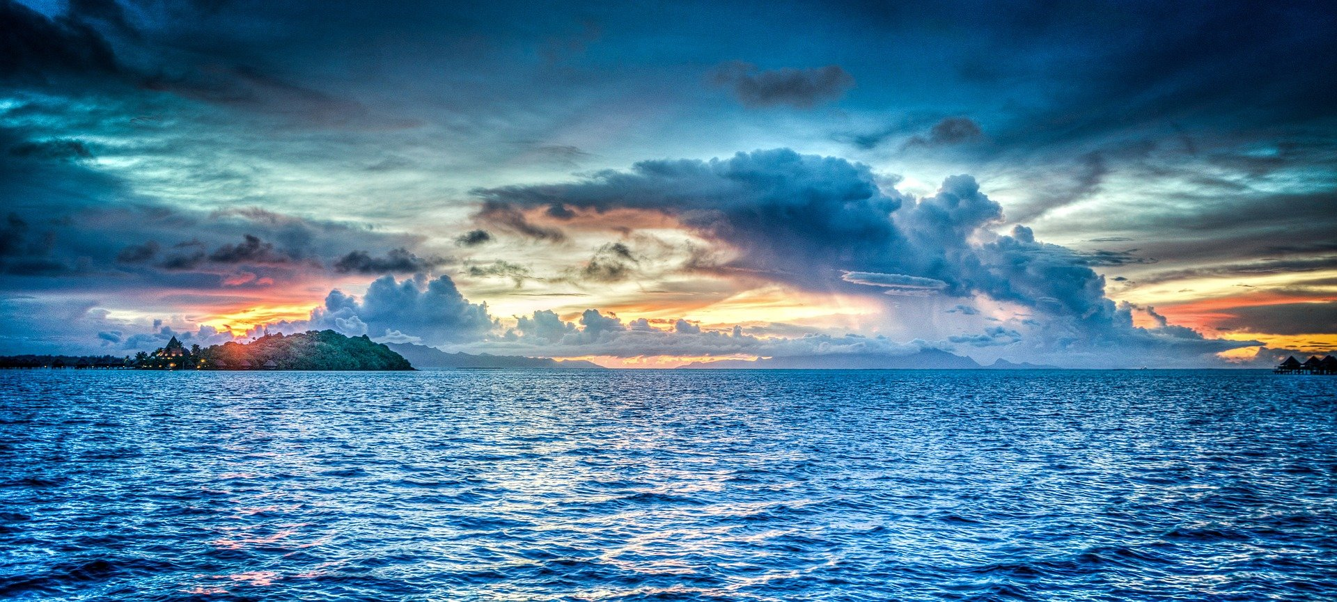 how nutrients are removed in oxygen depleted regions of the ocean