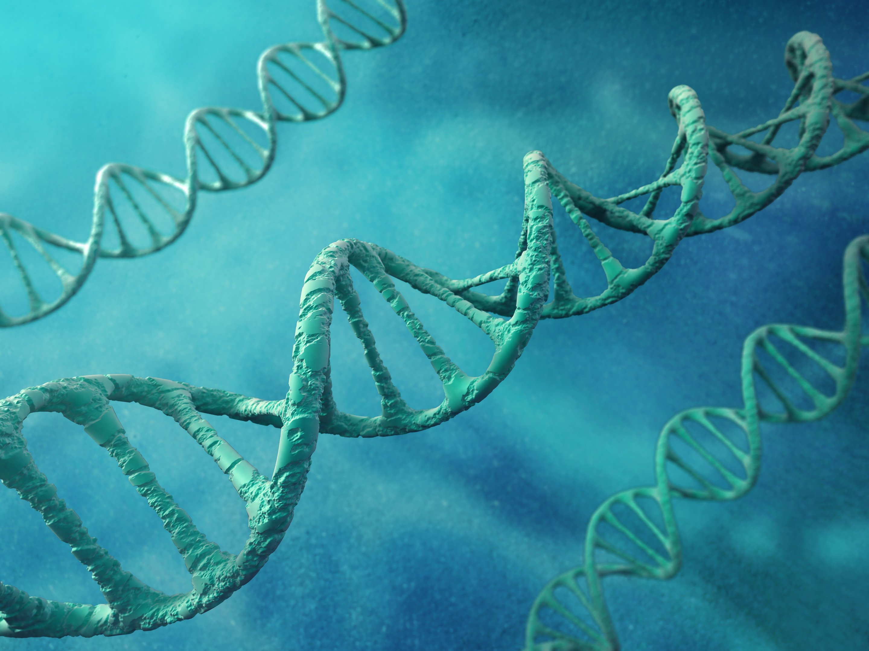 Researchers build dna replication in a model synthetic cell malvernweather Choice Image