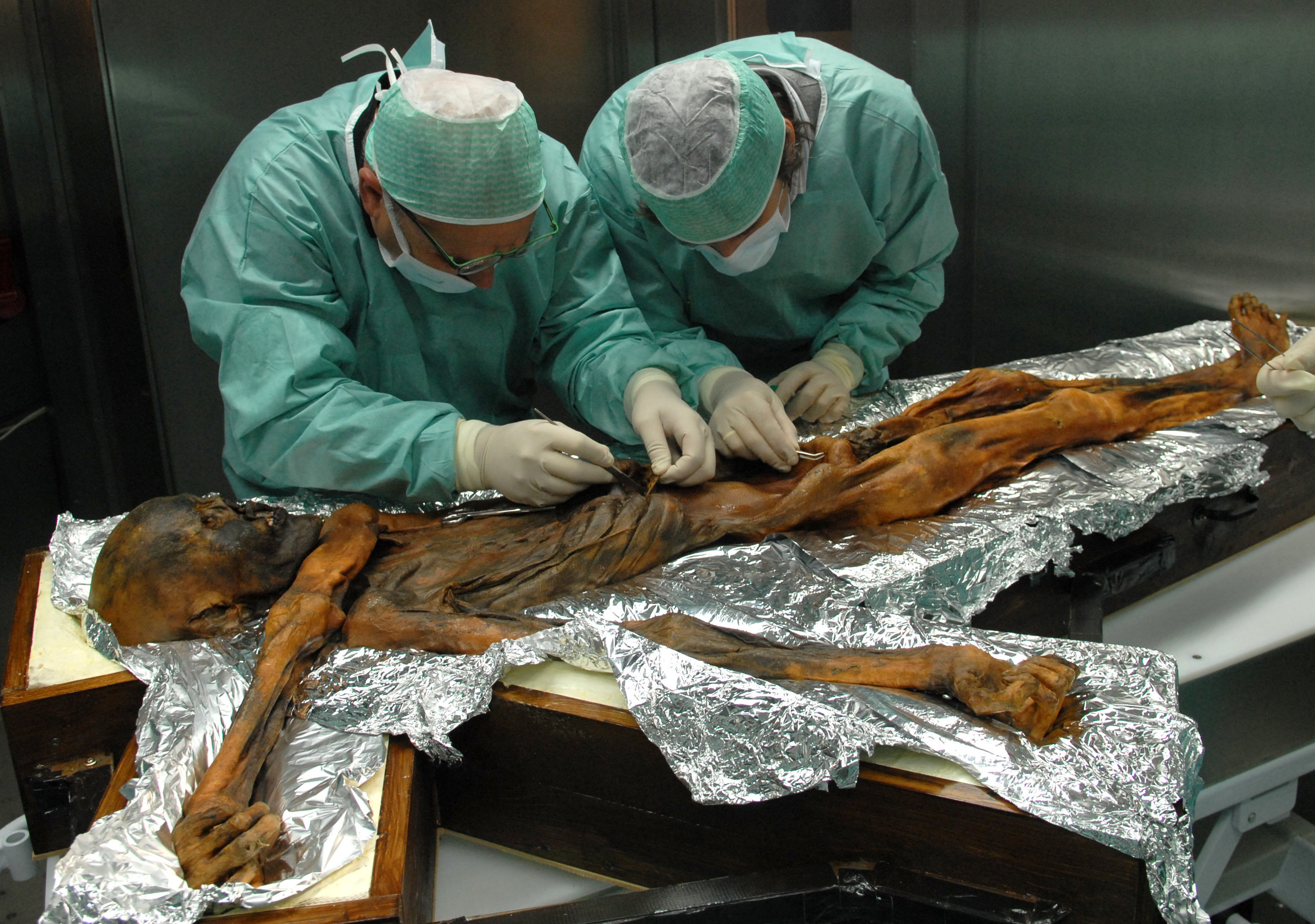 Otzi was brought to his final home at the.