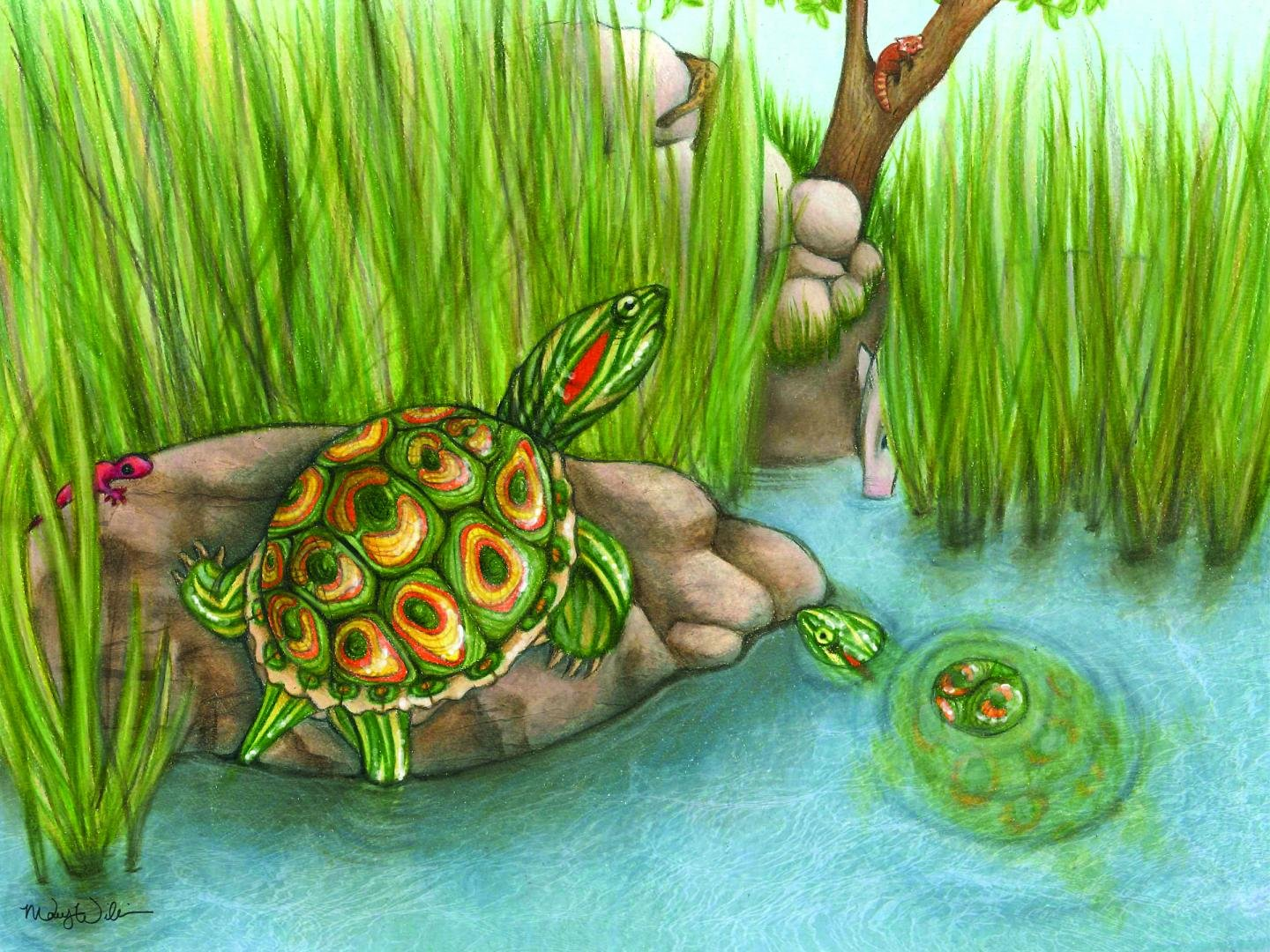 5.5 million-year-old fossil turtle species sheds light on invasive ...
