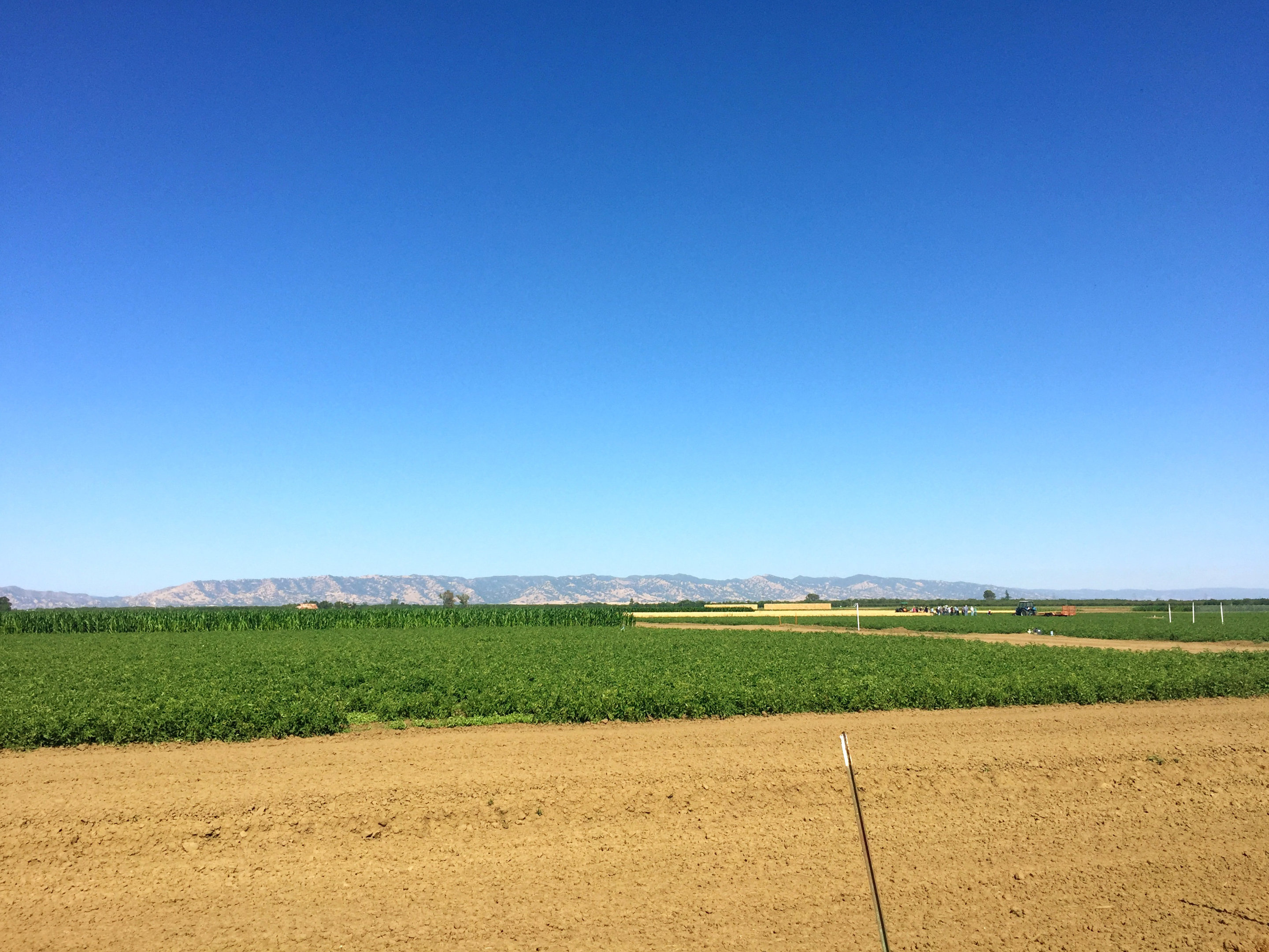 central valley soil emissions a large source of state s nitrogen