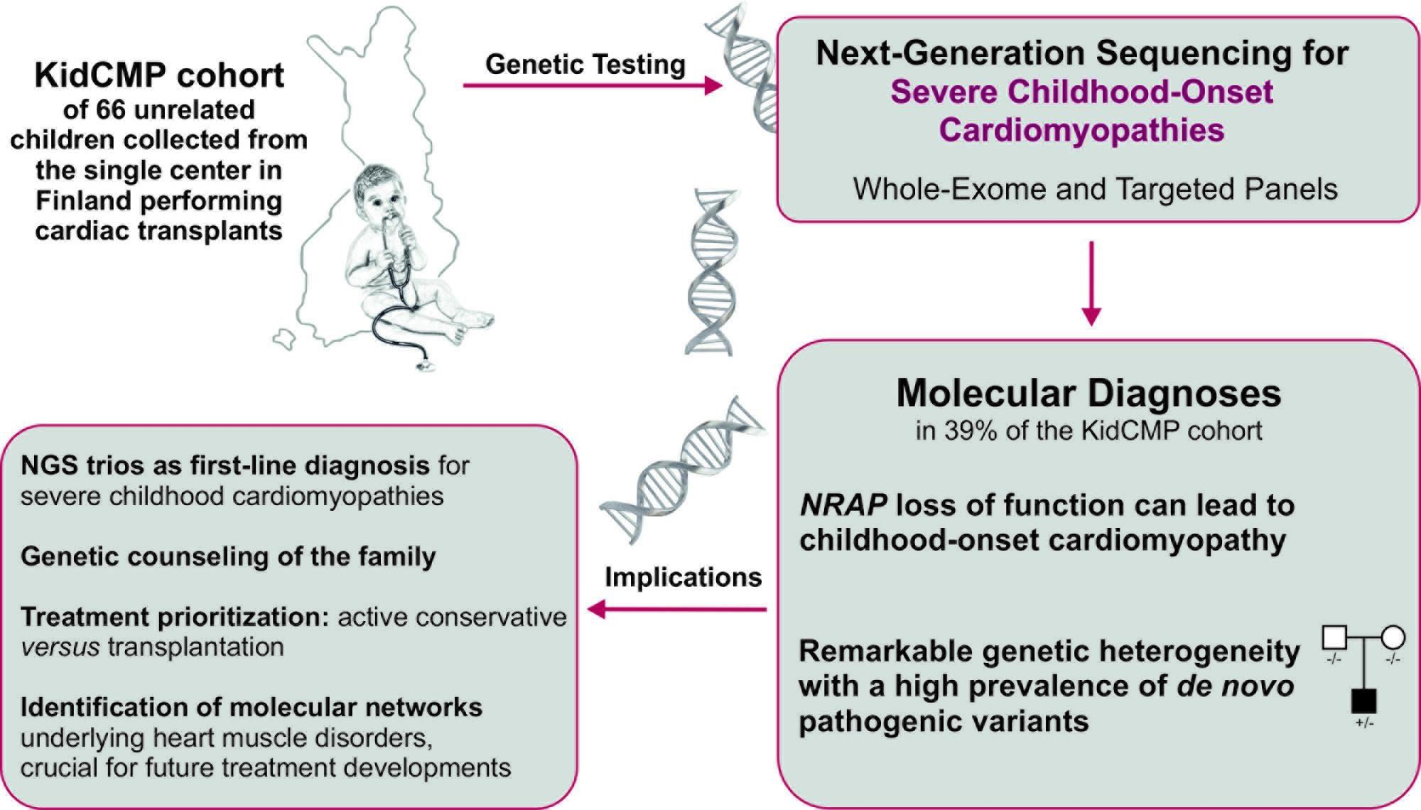 Genetic study clarifies the causes of the most severe ...