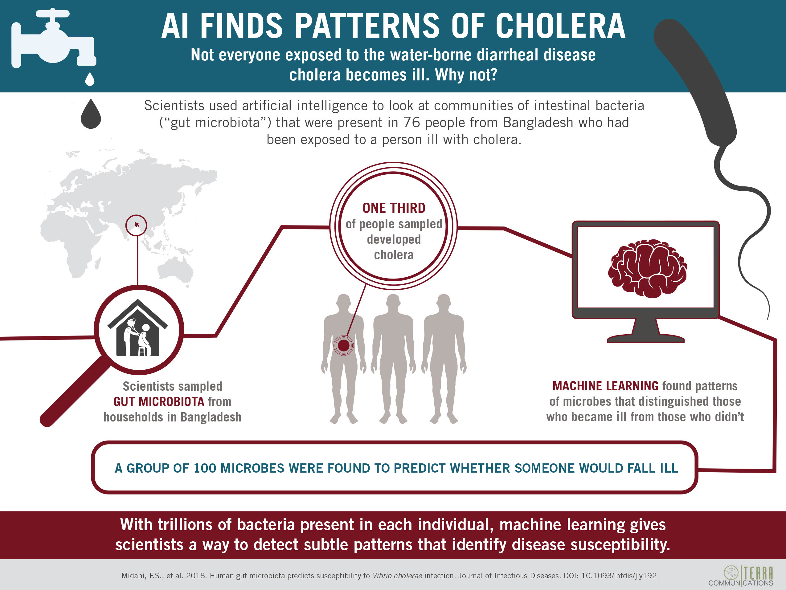 AI detects patterns of gut microbes for cholera risk