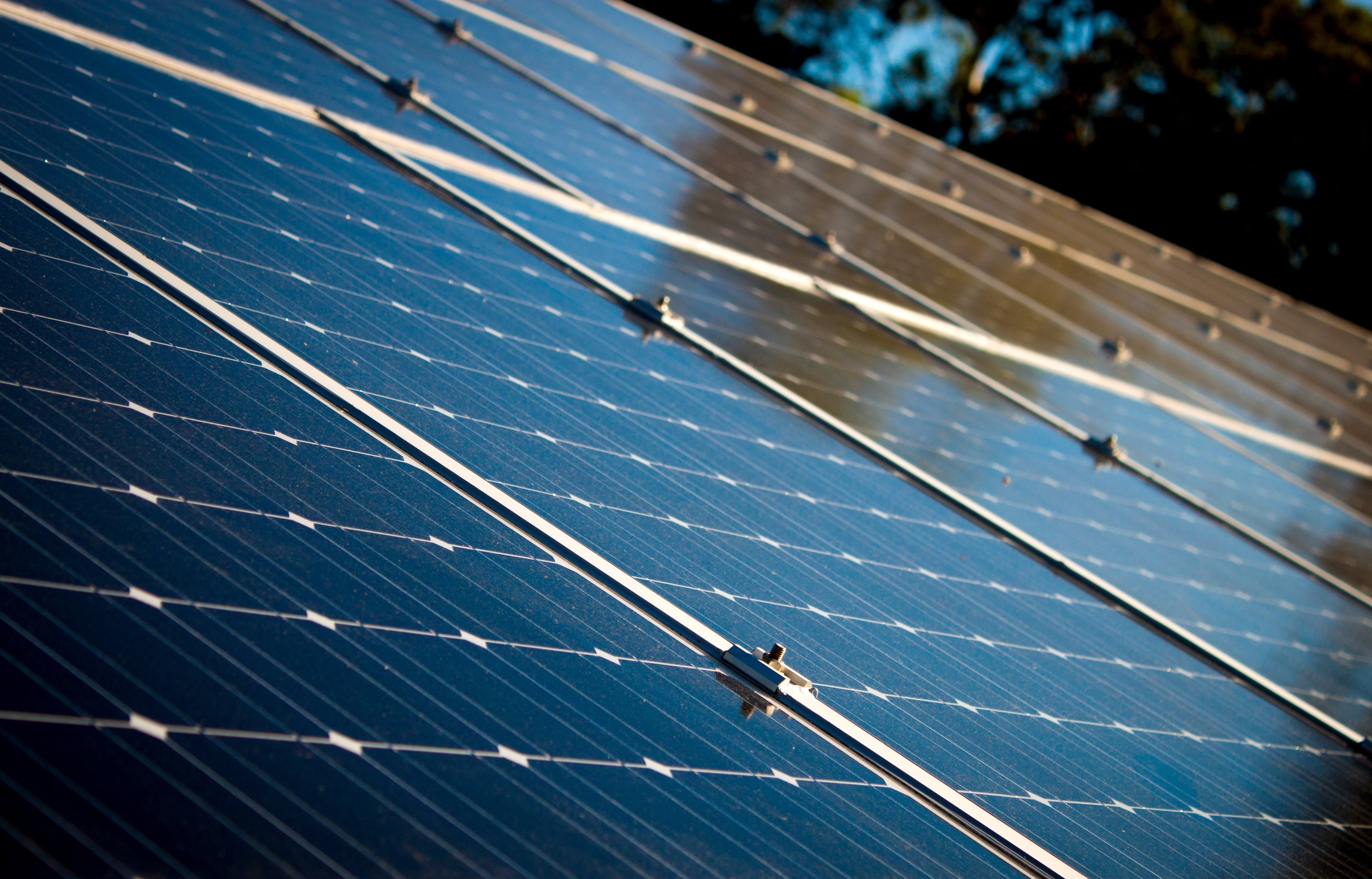 are solar panels a middle class purchase this survey says yes
