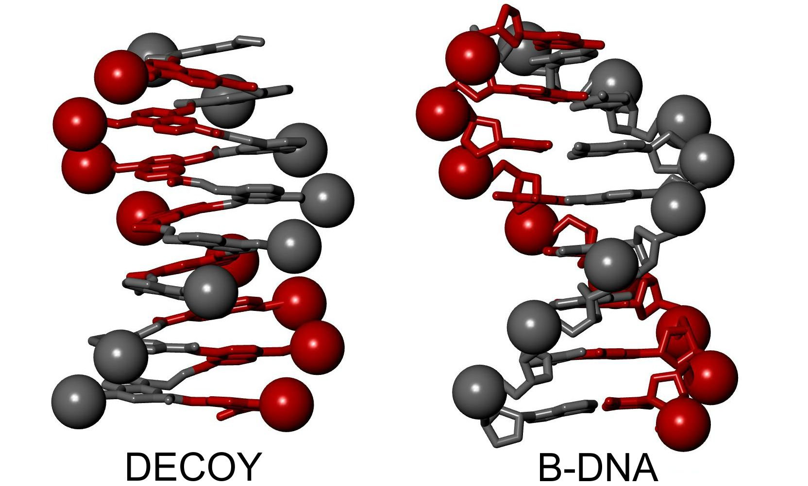 Biomimetic chemistry—DNA mimic outwits viral enzyme