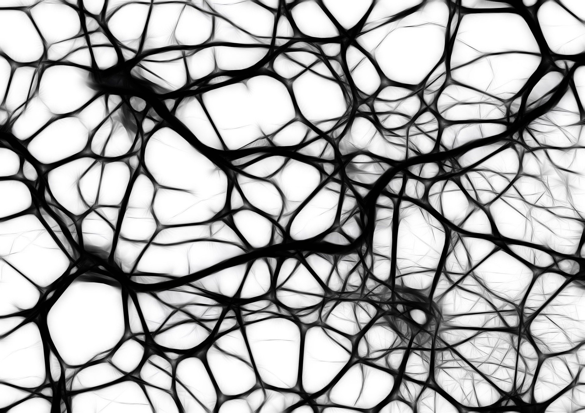 the dimension of a space can be inferred from the abstract network