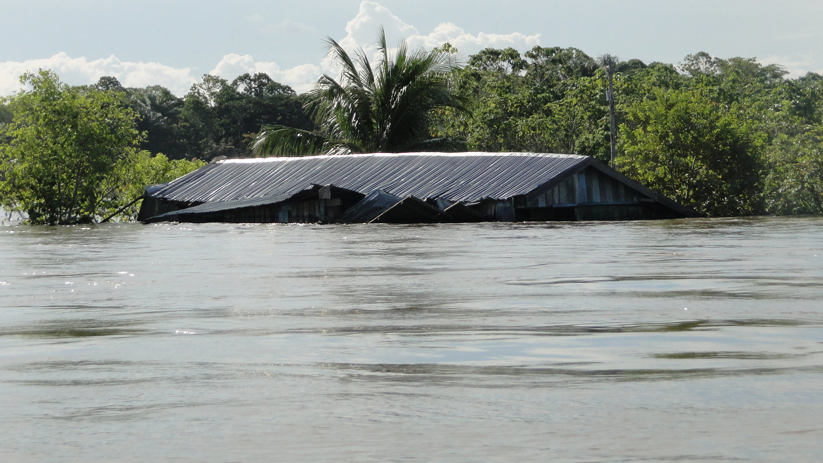 flood frequency of the world s largest river has increased fivefold
