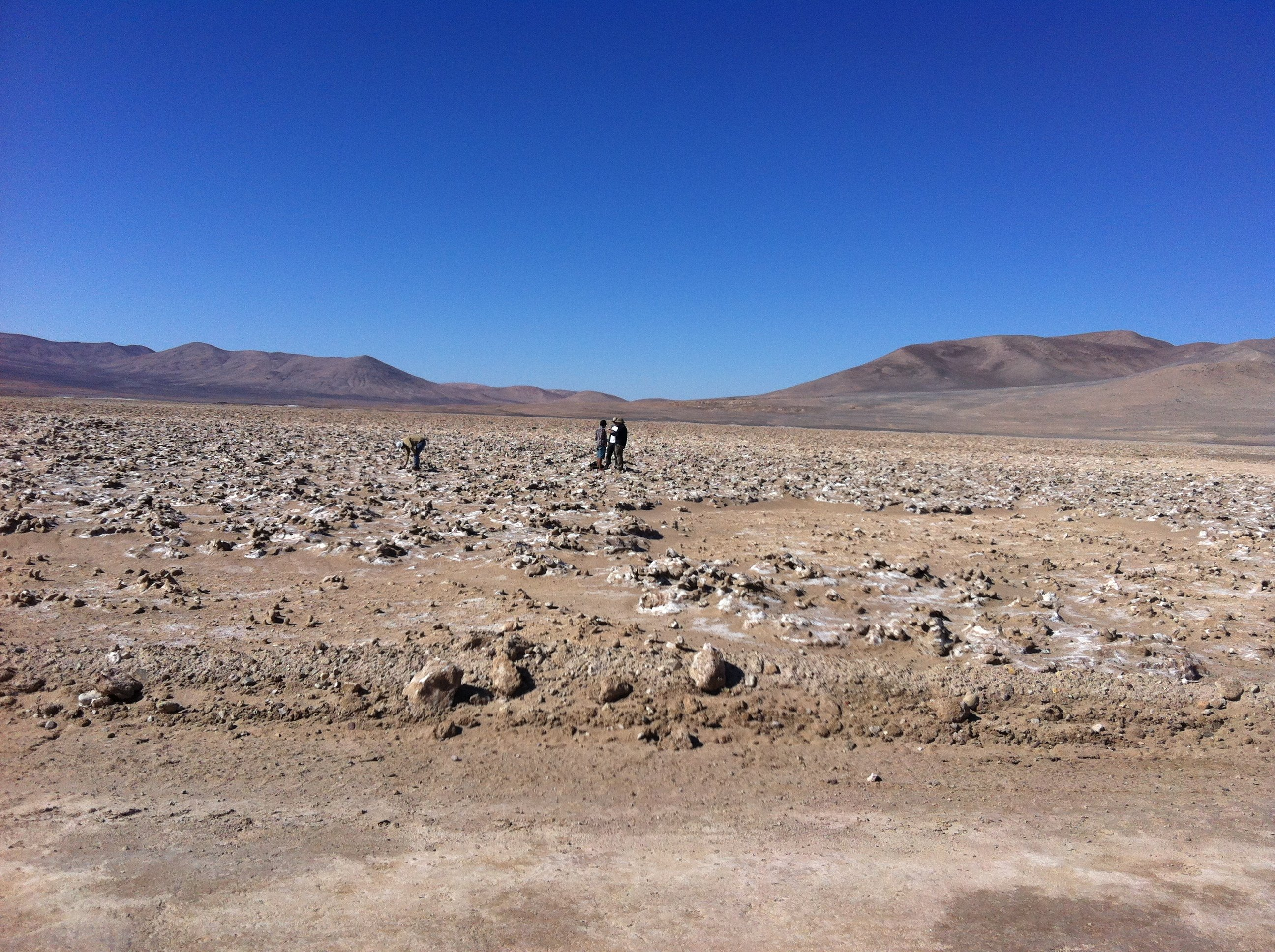 Atacama - the driest desert in the world 20