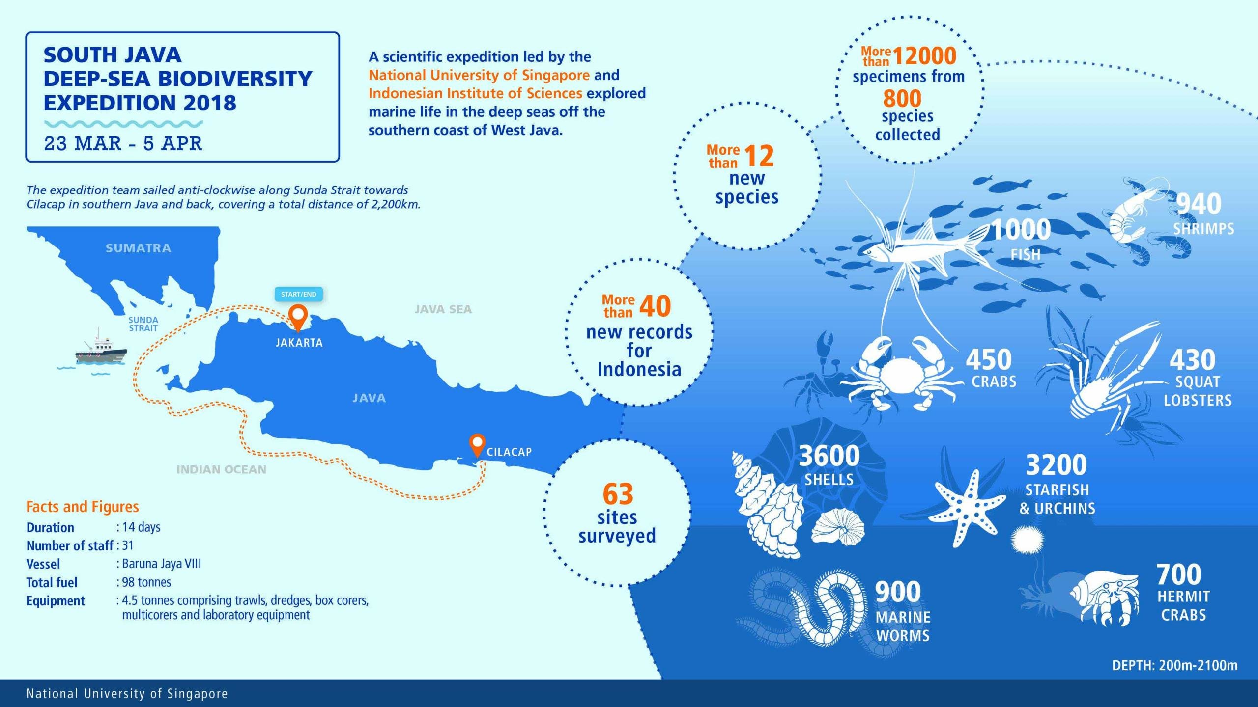 photo image More than 12,000 marine creatures uncovered during first-ever exploration of West Java seas