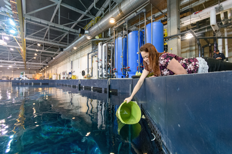 motley crews of bacteria cleanse water at huge oceanic georgia