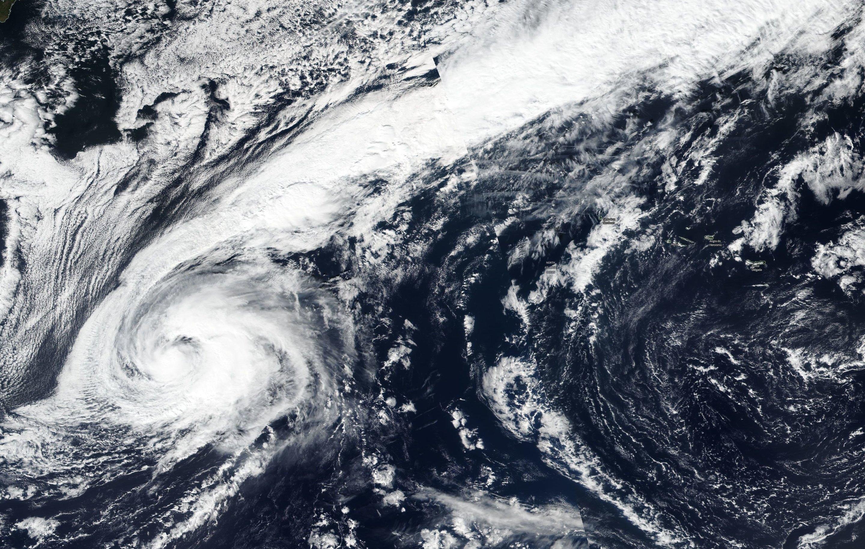 Resultado de imagem para Leslie storm
