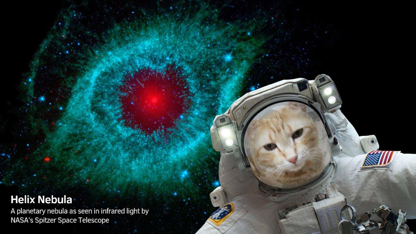 spacecraft app - photo #11