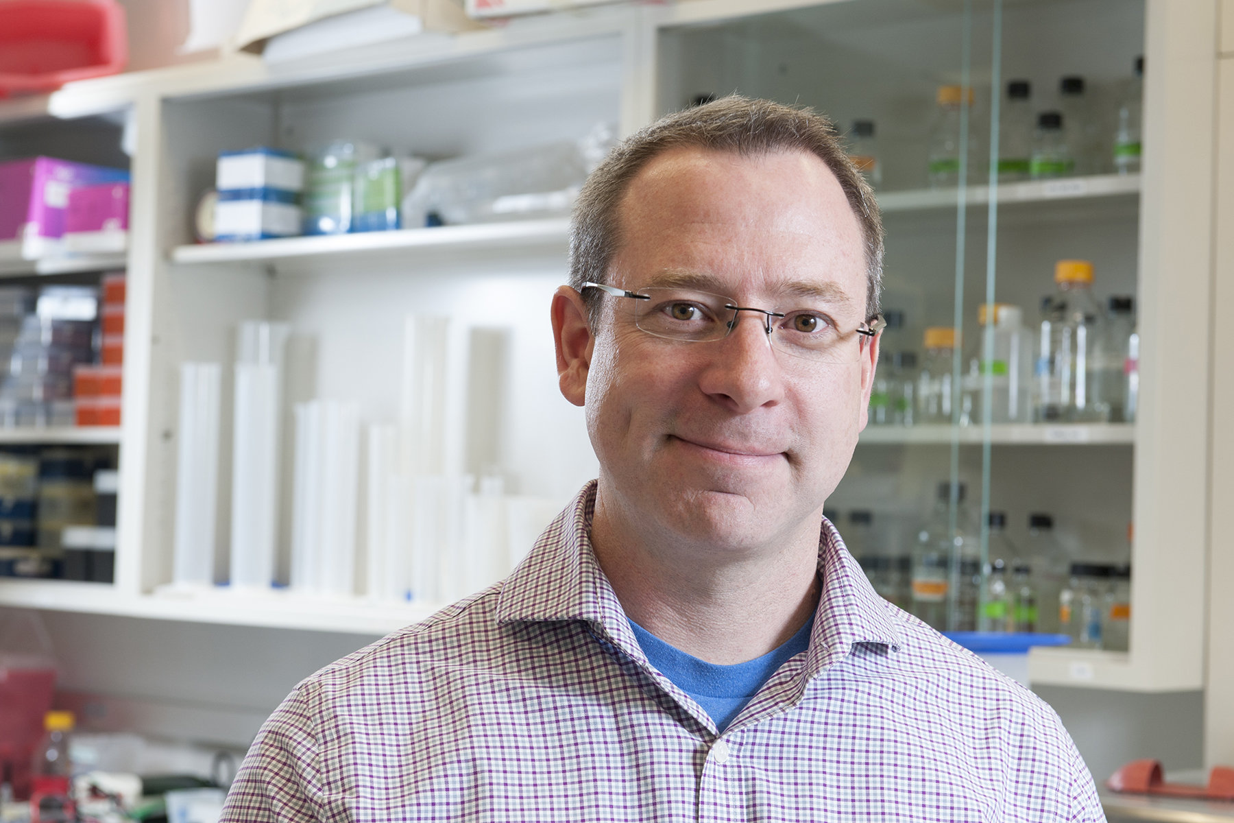 New compound may stop bacteria from causing sickness