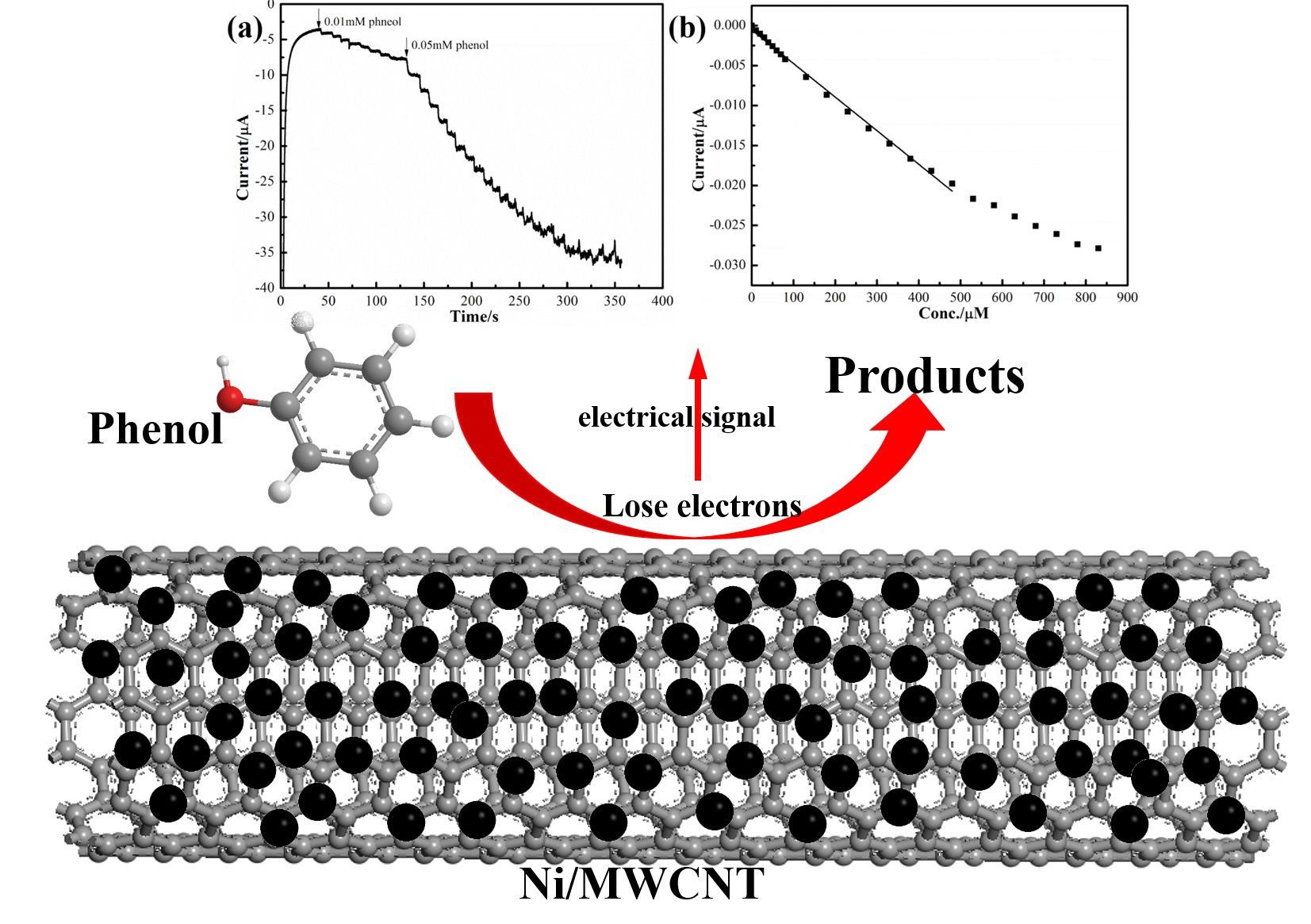 Ni/MWCNT-based electrochemical sensor for fast detection of phenol in wastewater - Phys.Org