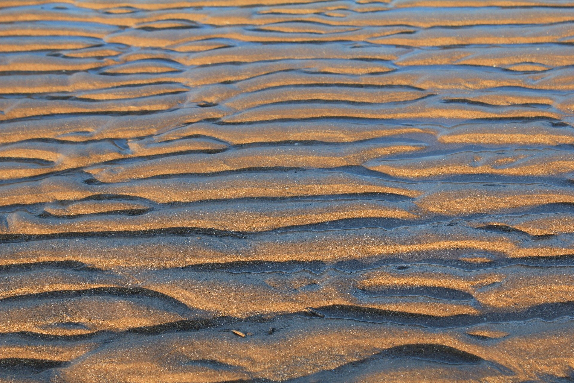 Beach sand ripples can be fingerprints for ancient weather ...