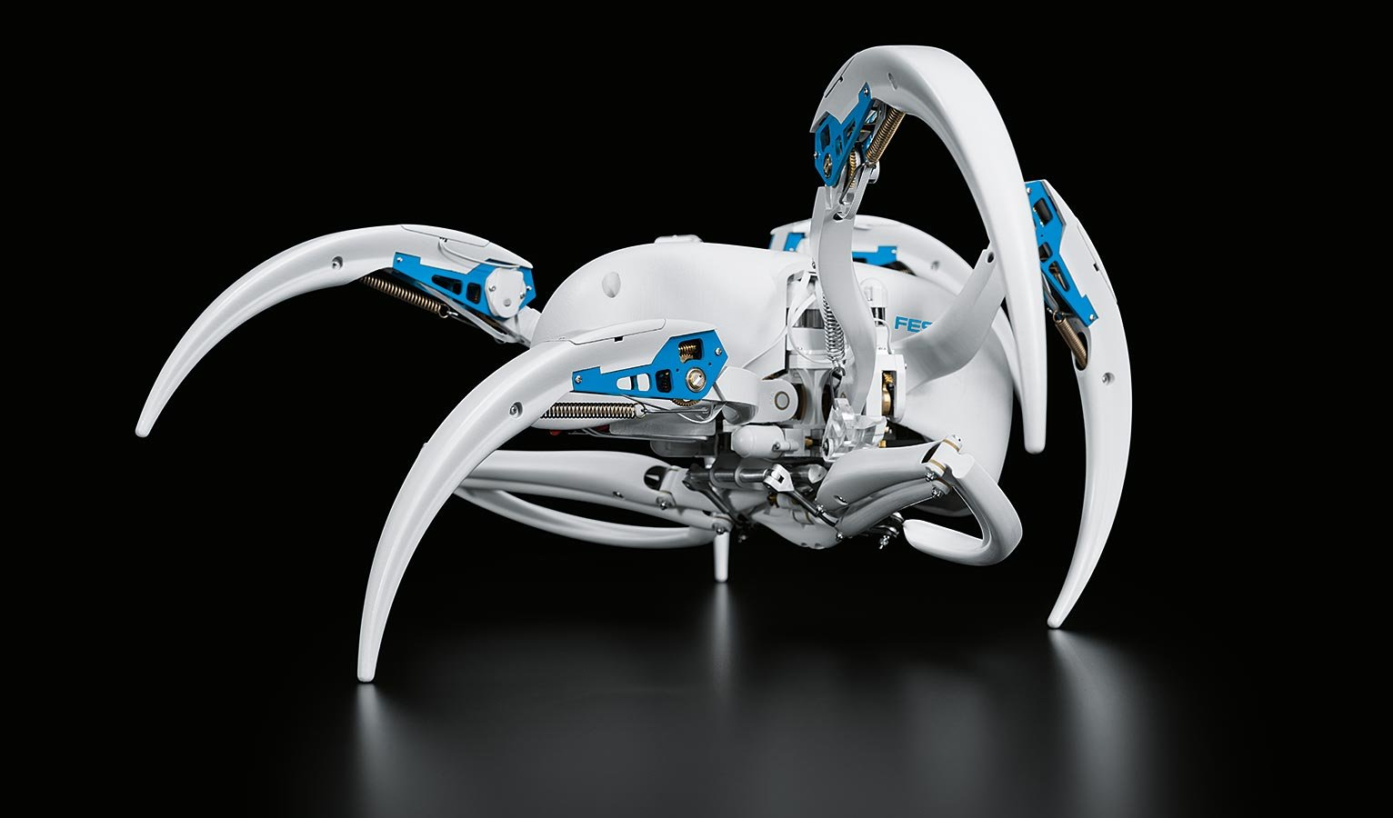 Robot Takes Cues From Spider That Can Walk And Roll