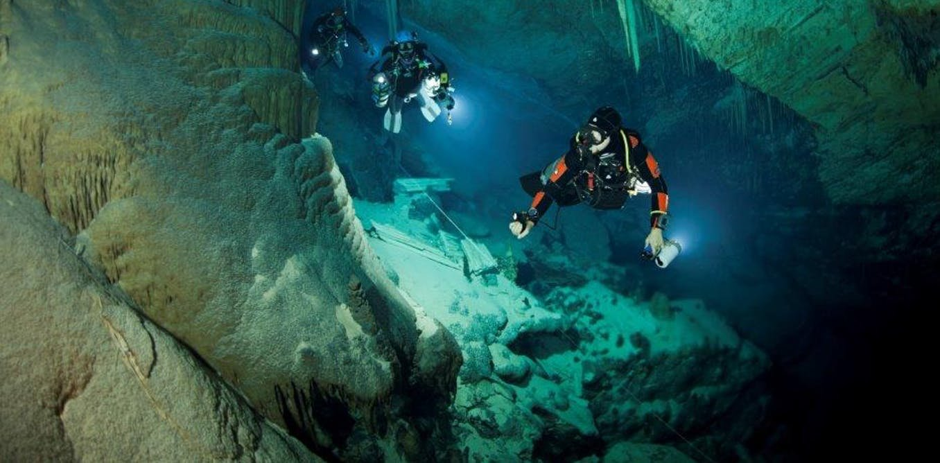 Image result for Scientists discover underworld ecosystem teeming with life