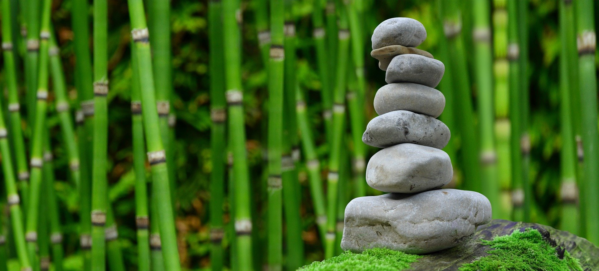 Existential spirituality can foster happiness study finds for Figuras para jardin zen