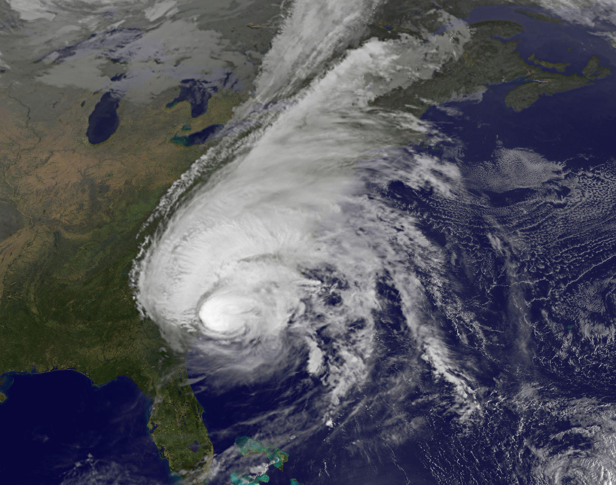 Two Decades Of Hurricanes Change Coastal Ecosystems