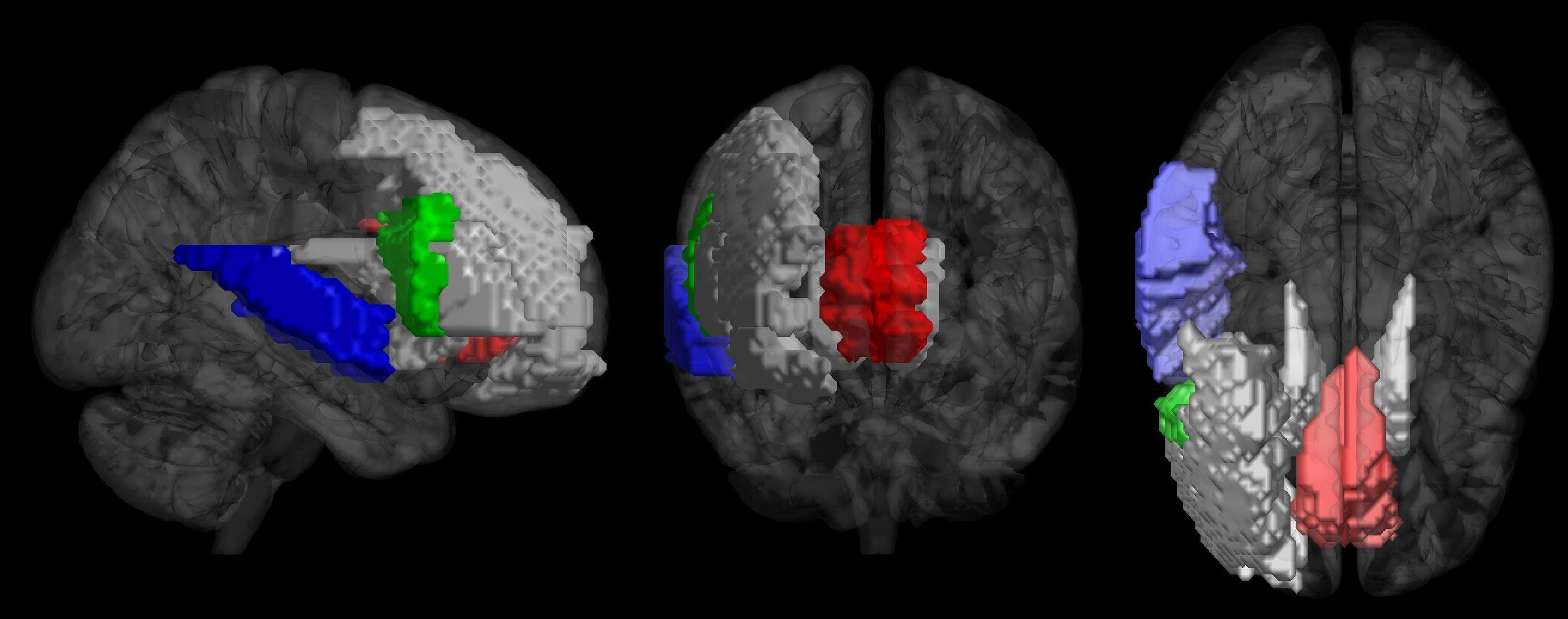Your Brain Responses To Music Reveal If Youre A Musician Or Not
