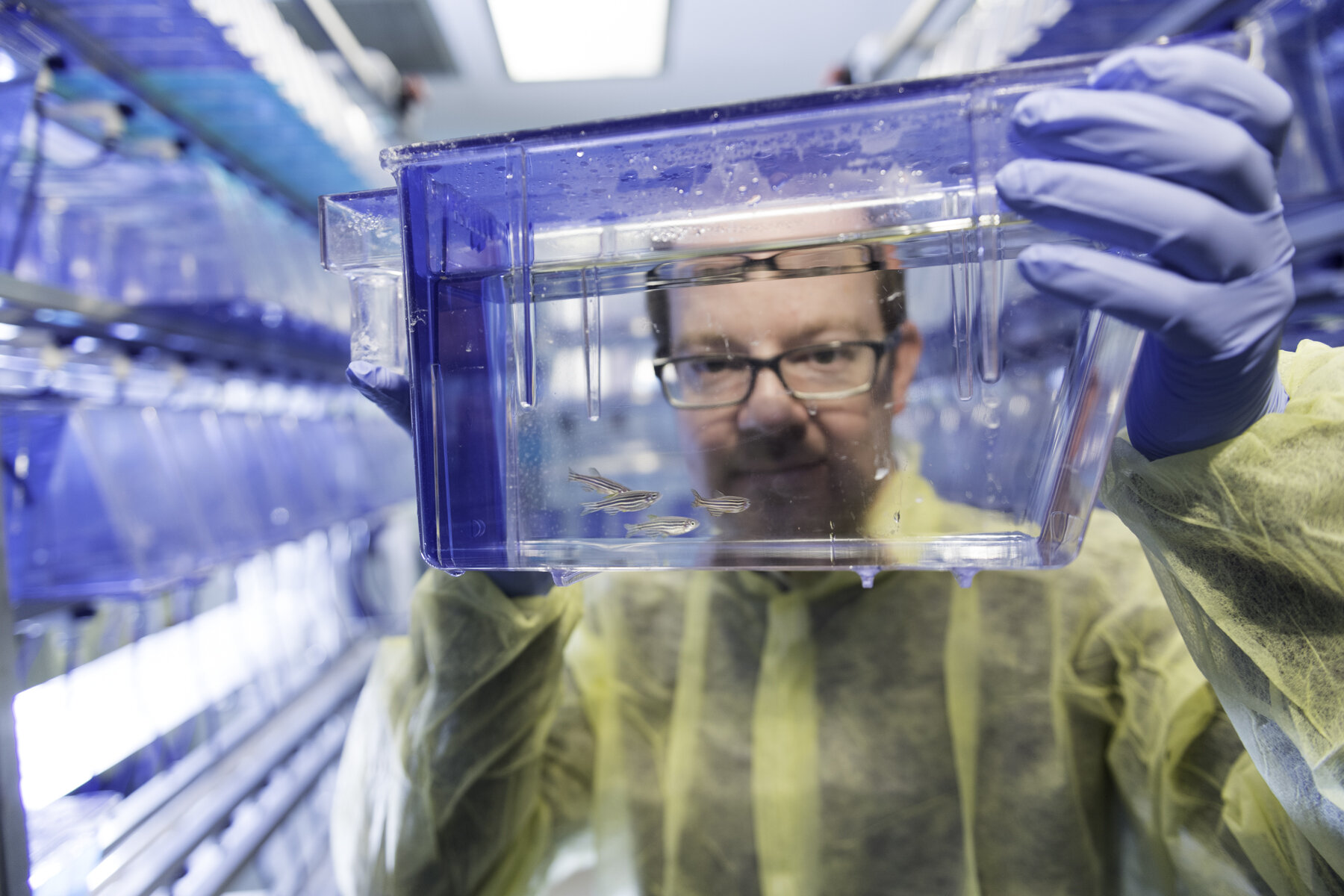 Have microscope, will travel: New tech project links Madison, Boston scientists
