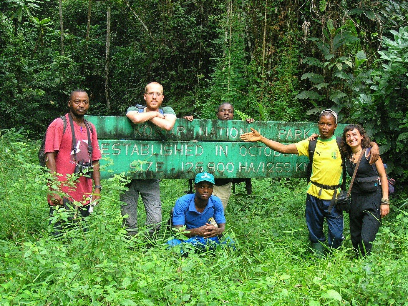 How much rainforest do birds need?