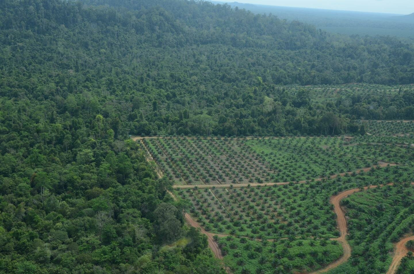 Biodiversity Crisis Technological Advances In Agriculture
