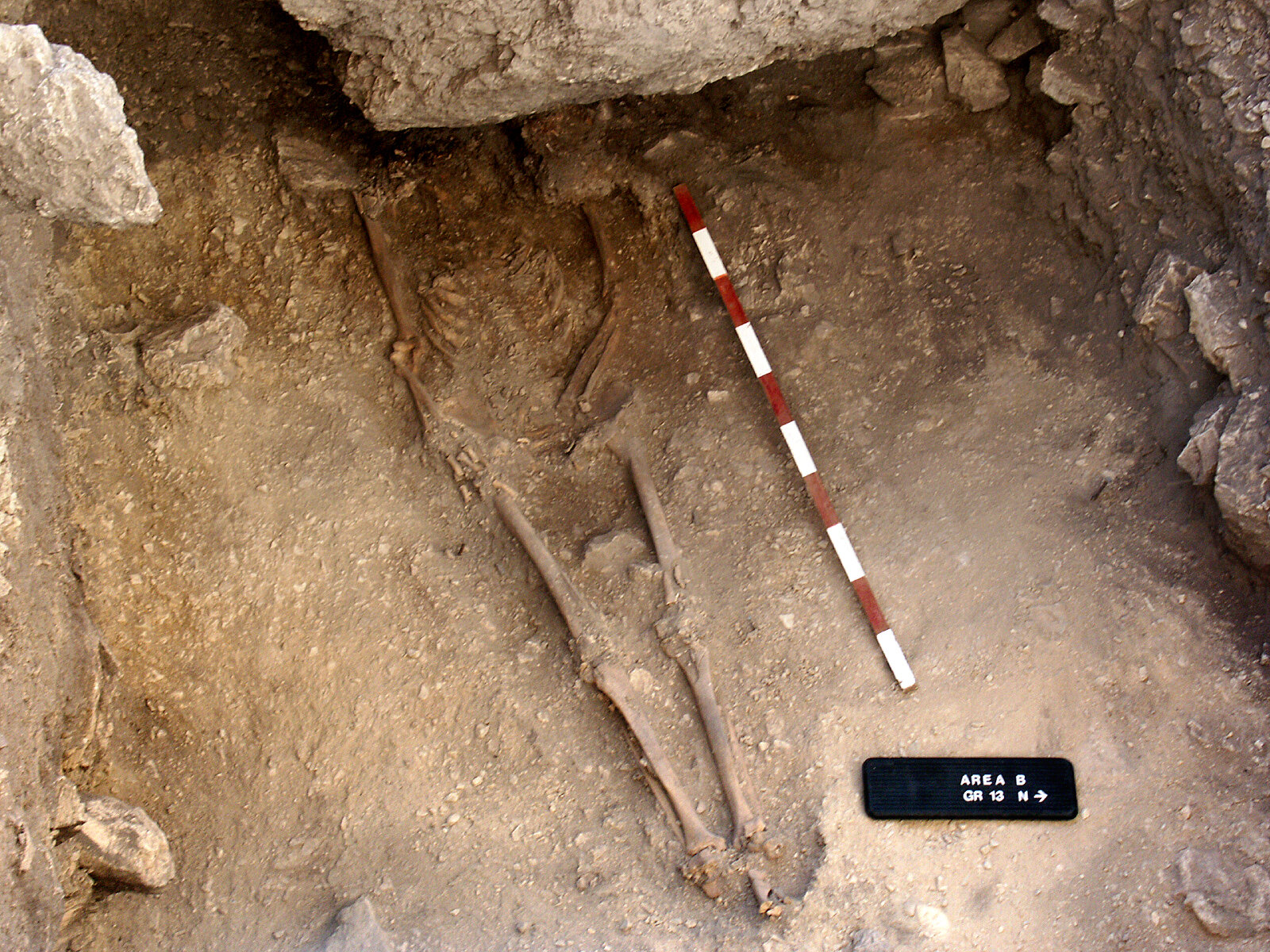 First Anatolian farmers were local hunter-gatherers that adopted agriculture