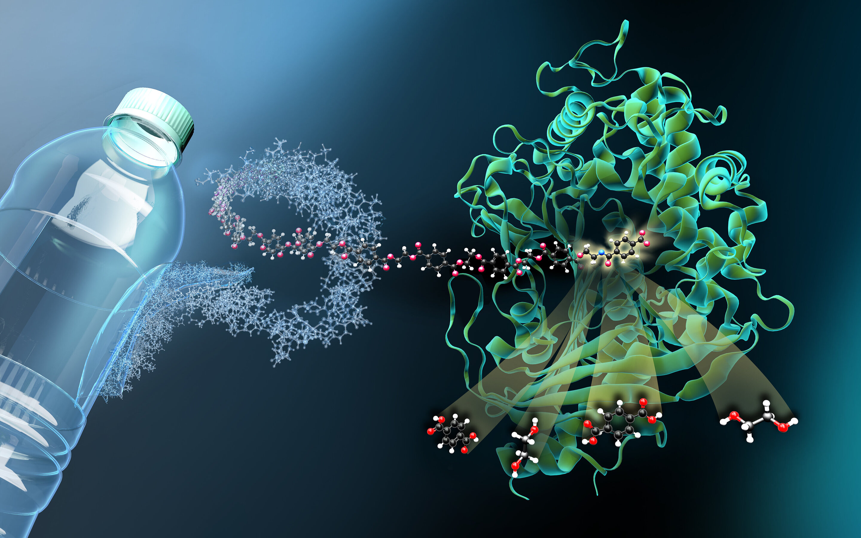 QnA VBage Researchers characterize molecular scissors for plastic waste