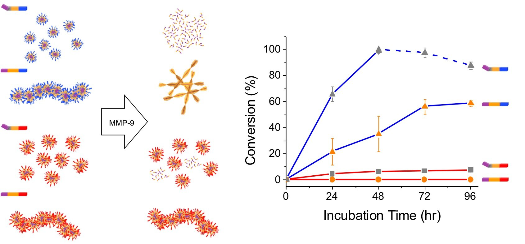 New paper provides design principles for disease-sensing nanomaterials