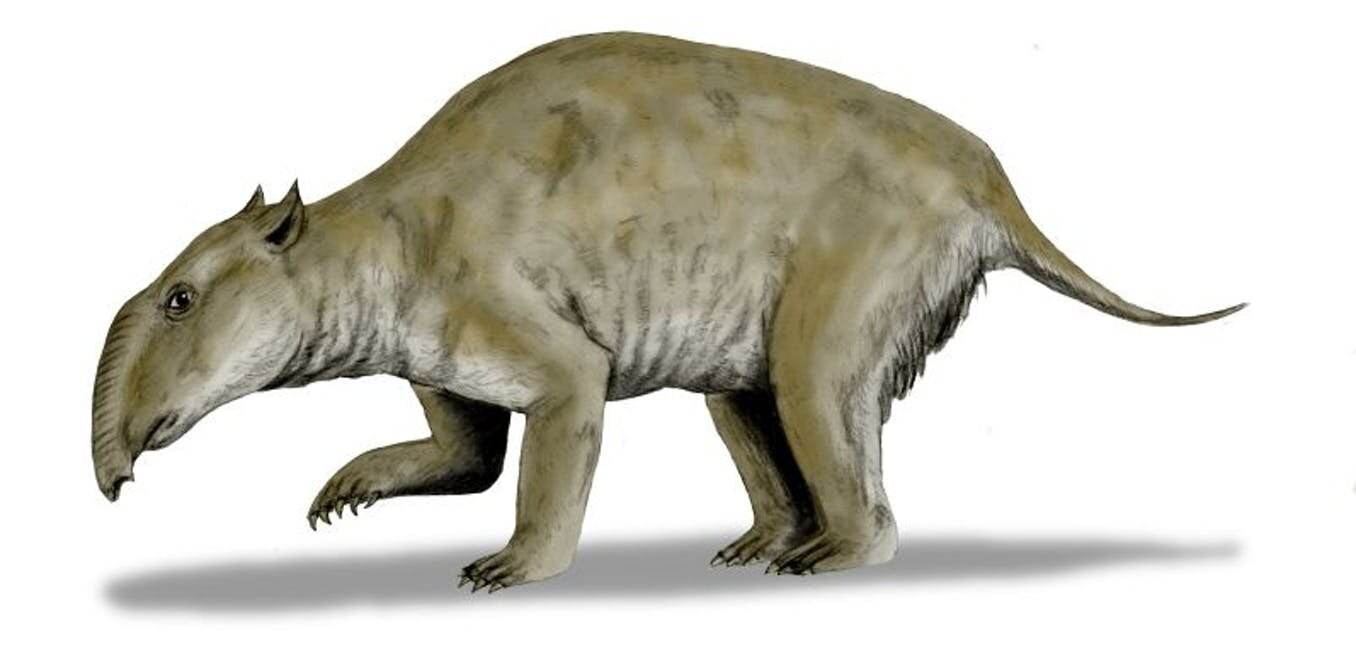 photo of Of bunyips and other beasts: Living memories of long-extinct creatures in art and stories image