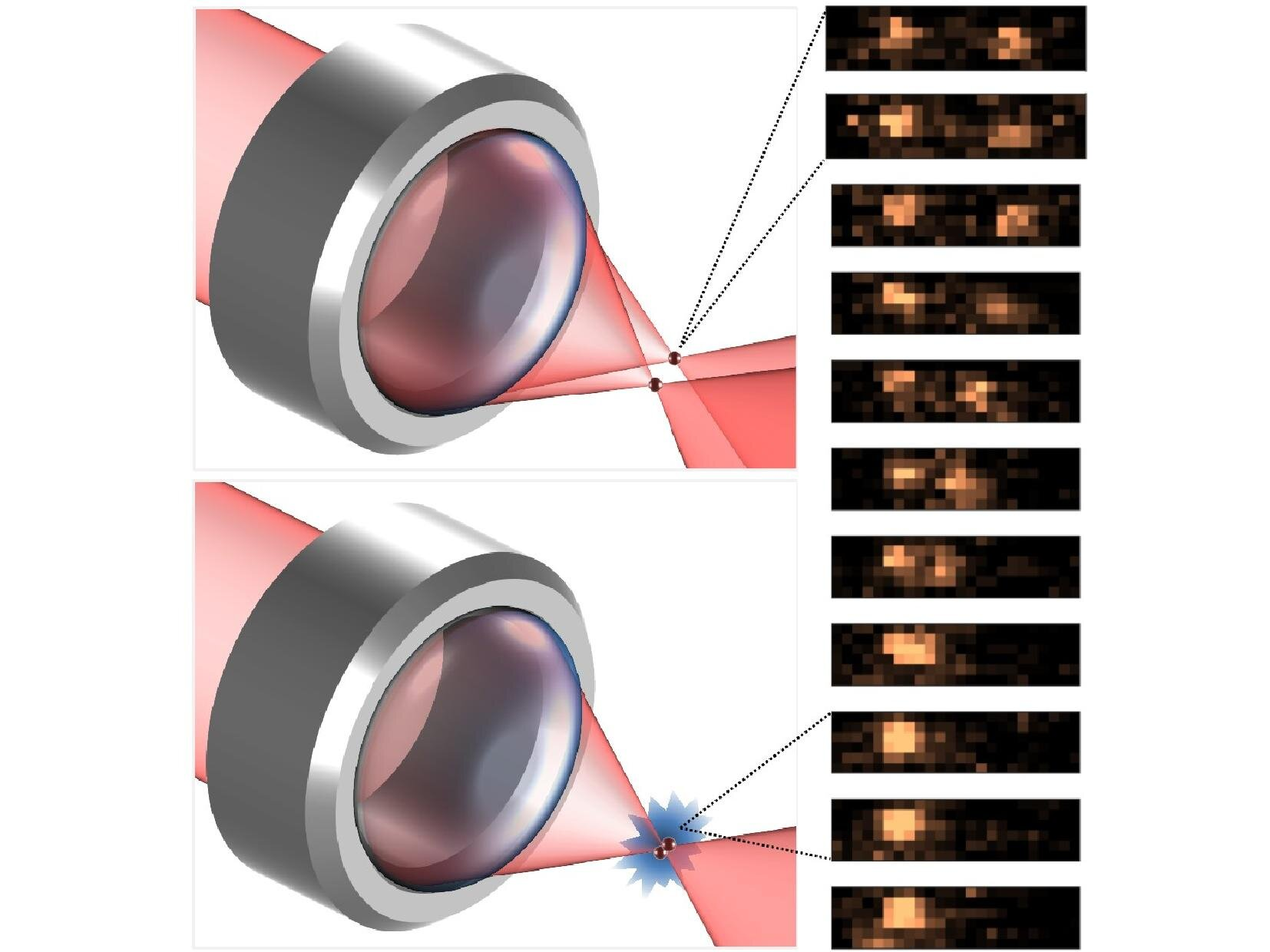 Atom interaction discovery valuable for future quantum technologies - Phys.org