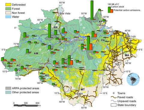 deforestation research paper