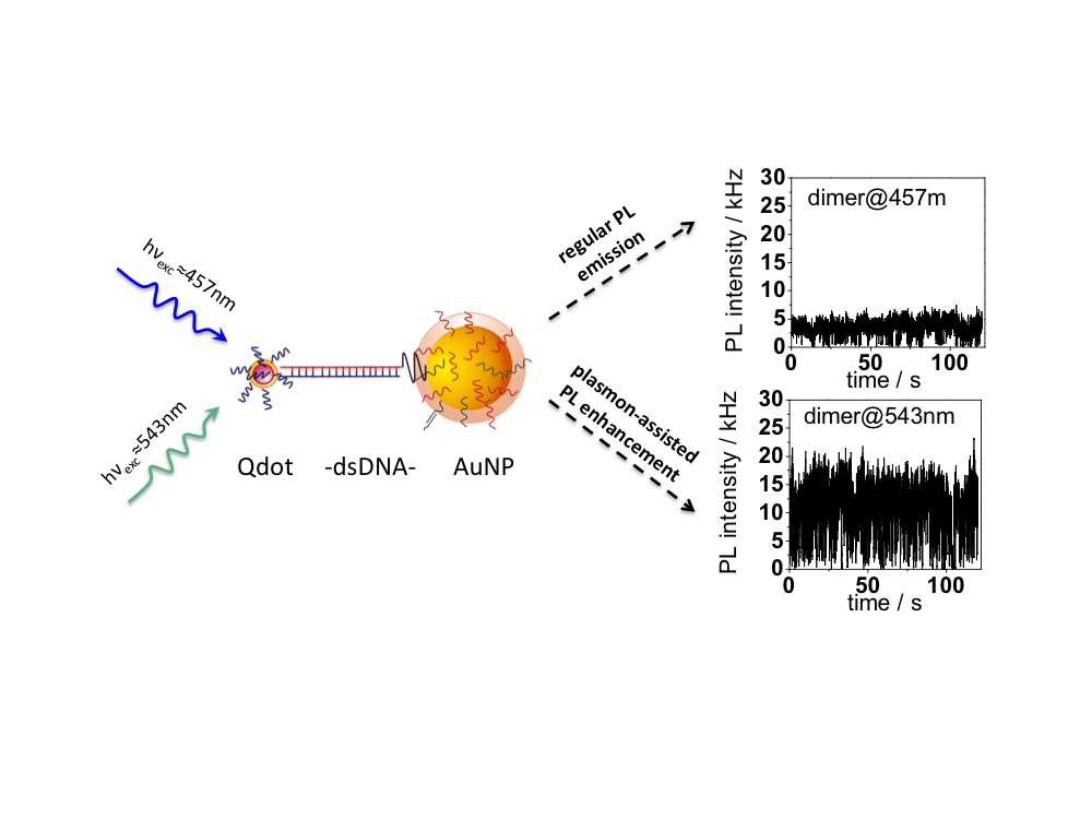 Nanoparticles Increase Intensity Of Quantum Dots Glow